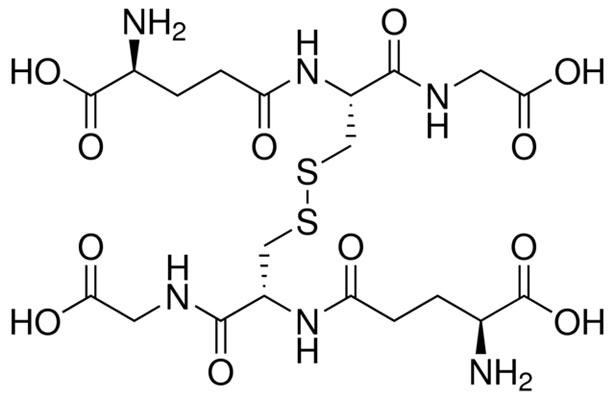 Дисульфидный мостик между двумя молекулами глутатиона.