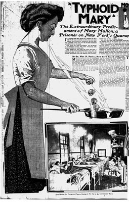 Тифозная Мэри, работавшая кухаркой, была здоровой носительницей палочек брюшного тифа. Она заразила брюшным тифом более полутысячи человек.