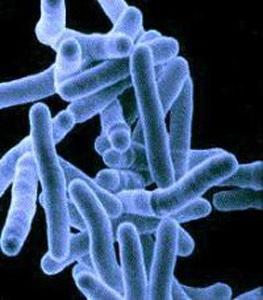 Вид туберкулезной палочки в электронном микроскопе.
