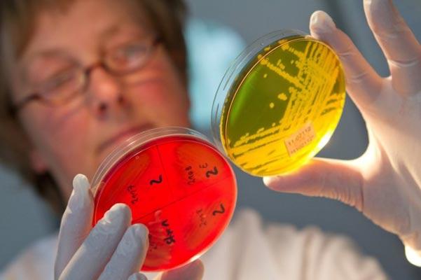 Кишечная инфекция у детей – исследование биоматериала.