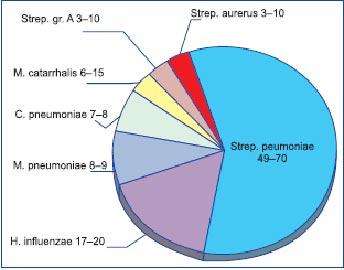 Этиологическая структура пневмоний (воспалений легких).
