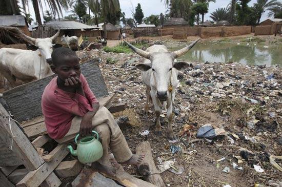 холера в Нигерии