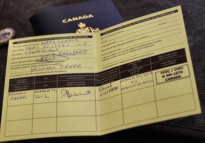 международный сертификат прививок