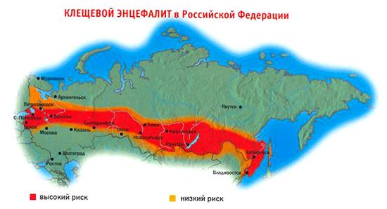 Территории РФ эндемичные по клещевому энцефалиту