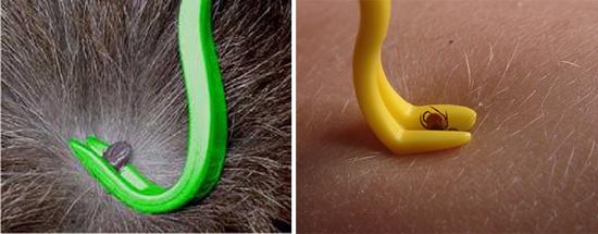французский прибор для извлечения клещей Tick Twister.