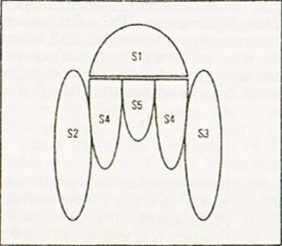 структура коклюшного токсина