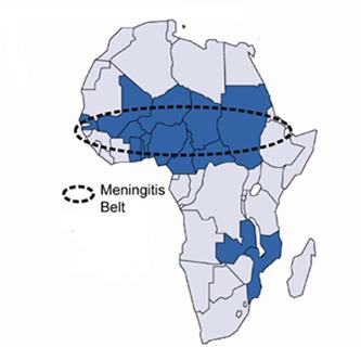 менингитный пояс