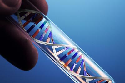 ДНК бледной трепонемы