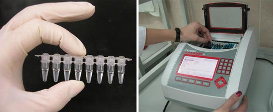 ПЦР гепатит в