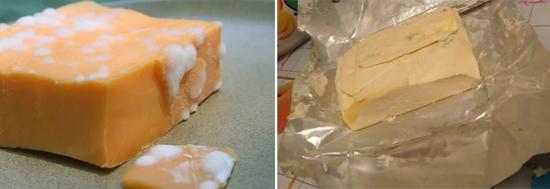 вредная плесень на сыре